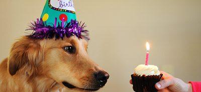decoração de aniversário com velas temáticas