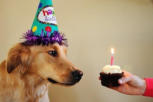 Ritual de aniversário com velas: aprenda como decorar